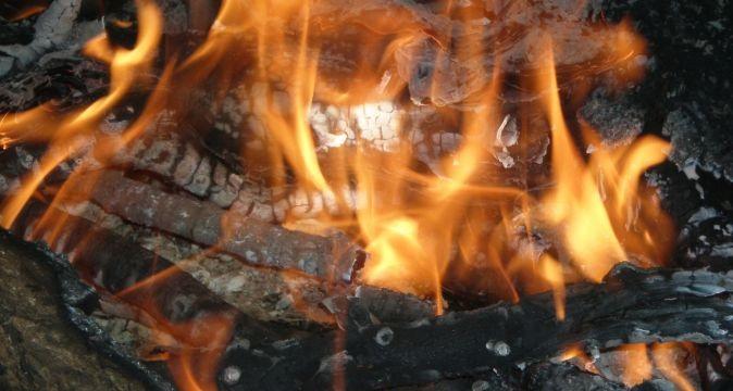 Rboles para obtener buena madera blog energy biomasa for Antorchas para jardin combustible