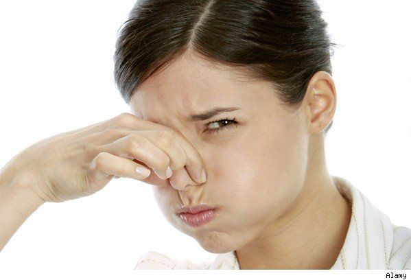 eliminar-malos-olores-chimeneas