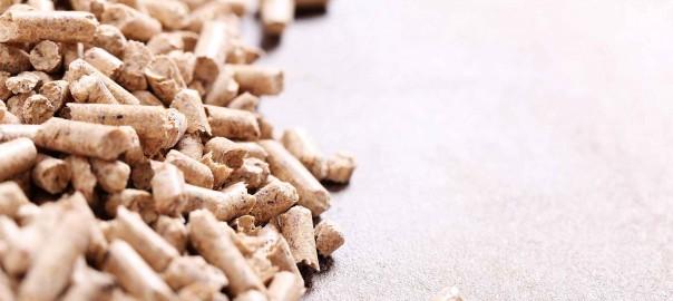 pellets-blog-energy-biomasa